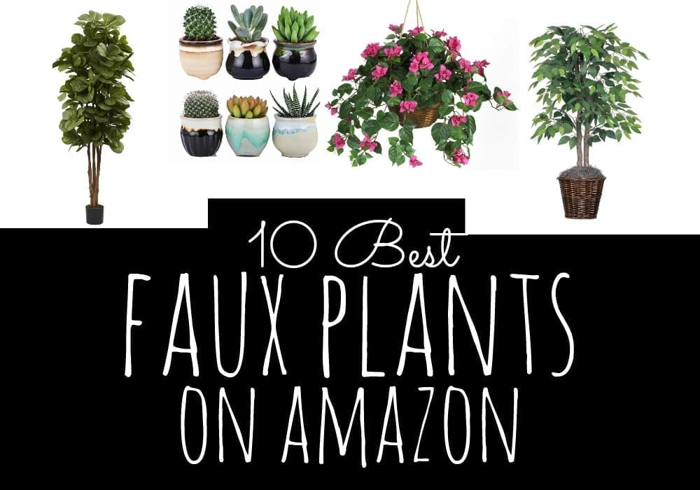 Have a black thumb? If so, you're in luck- fake plants look pretty darn realisitic these days! Here are the ten best faux plants on Amazon.